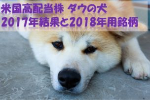 ダウの犬 米国株 2017年投資結果 2018年用銘柄